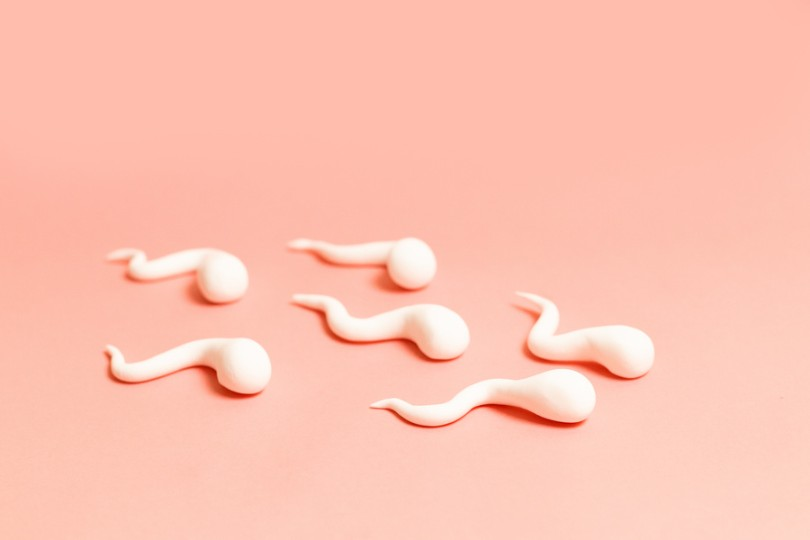 six spermatozoïdes roses sur fond rose